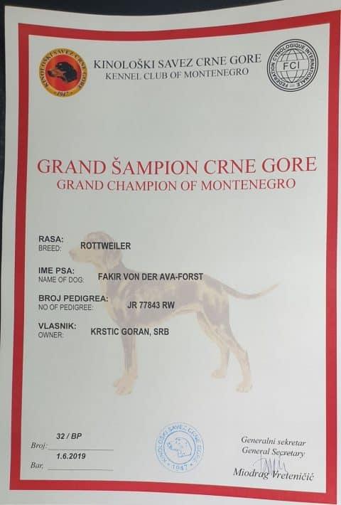 Grand CHAMPION FAKIR VON DER AVA-FORST