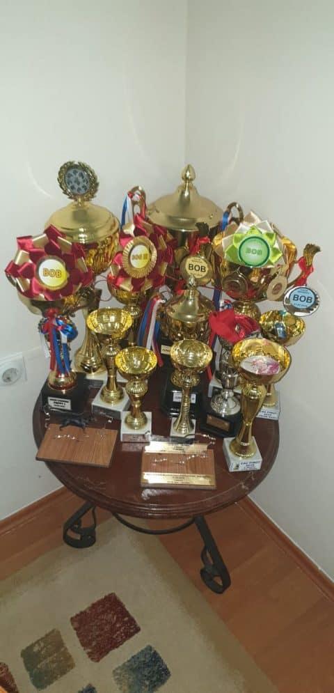 MULTI CHAMPION FAKIR-VON DER AVA-FORST collection of trophies
