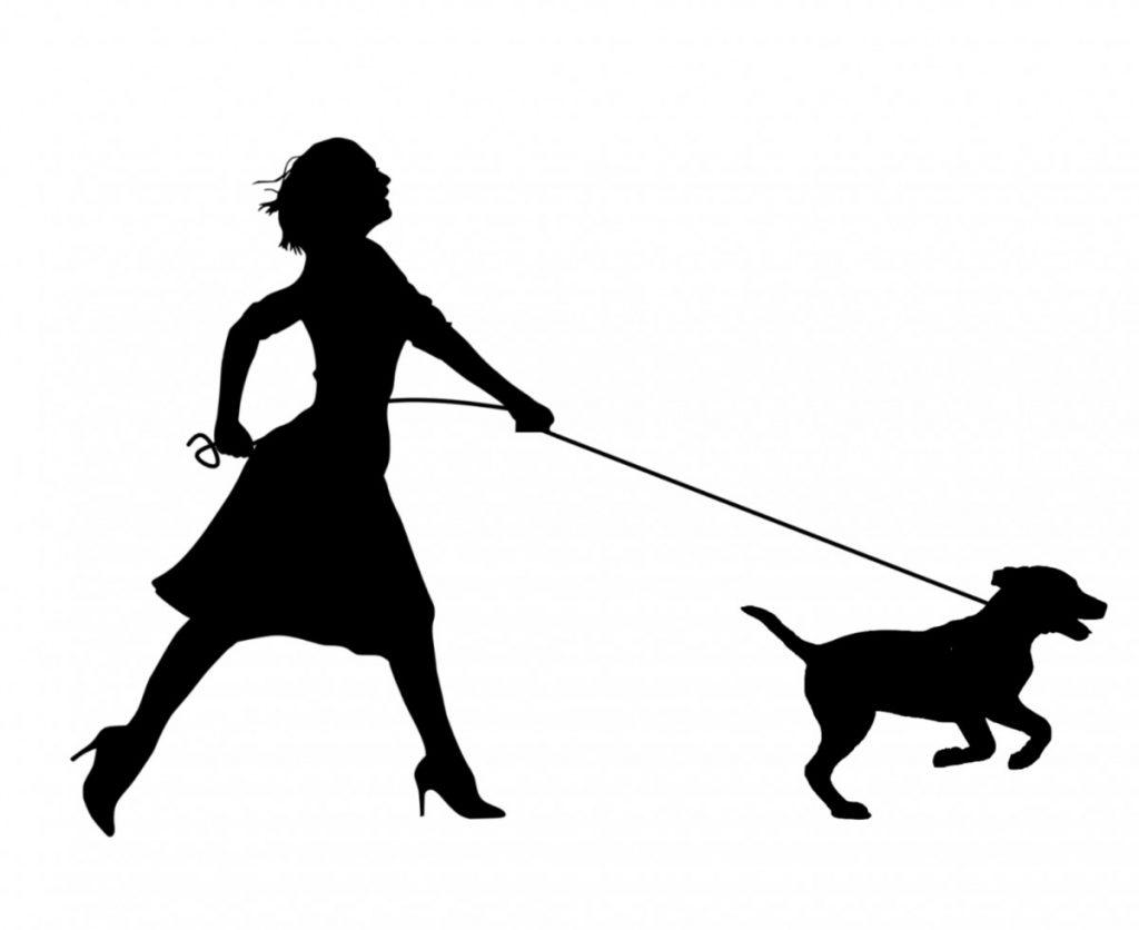 dog pulling hard on leash