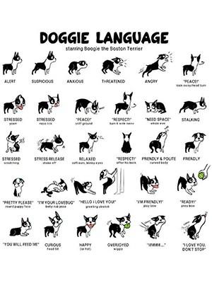 dog body language chart